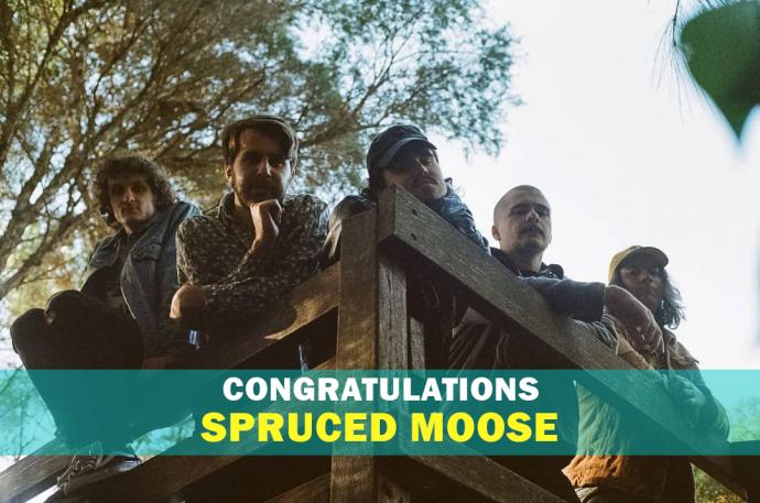 Spruced moose